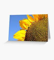 Extreme Close Up Greeting Card