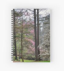 Blooming Marvellous Magnolia Tree  Spiral Notebook
