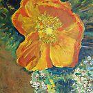 Yellow California Poppy by John Fish