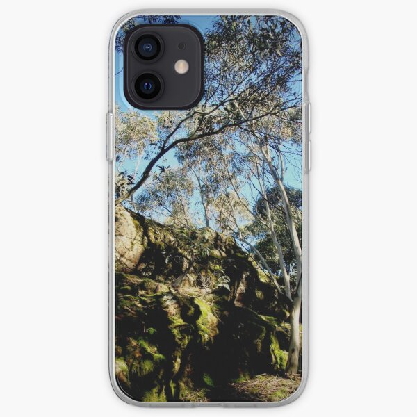 Morning Light on Camel's Hump iPhone Soft Case