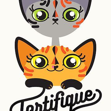 Cat Team Tortifique by 7115