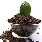 Bowl of Coffe Beans by James  Smart