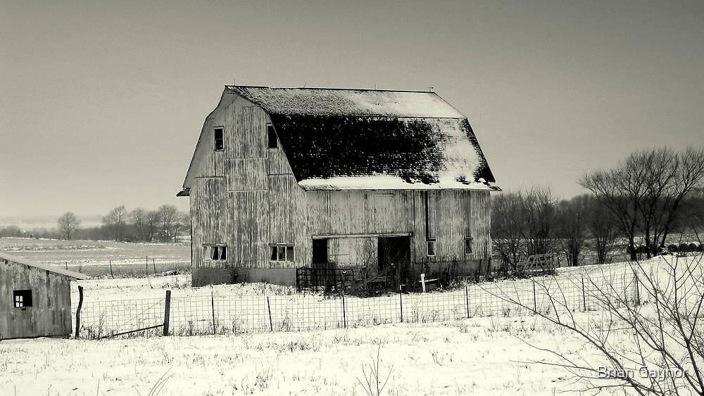 Newark Barn by Brian Gaynor