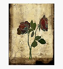 2 roses - valentine day Photographic Print