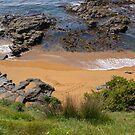 Katiki Point. by Anne Scantlebury