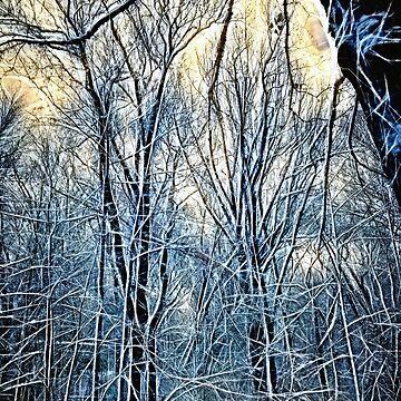 4 Oclock Winter Landscape by bloomingvine