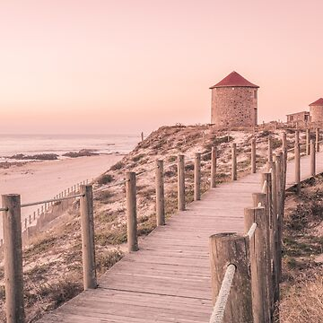 Old traditional wind-mills by homydesign