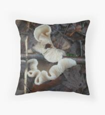 Update! One for Carla, stick eating fungi ! fungi eating stick? Throw Pillow