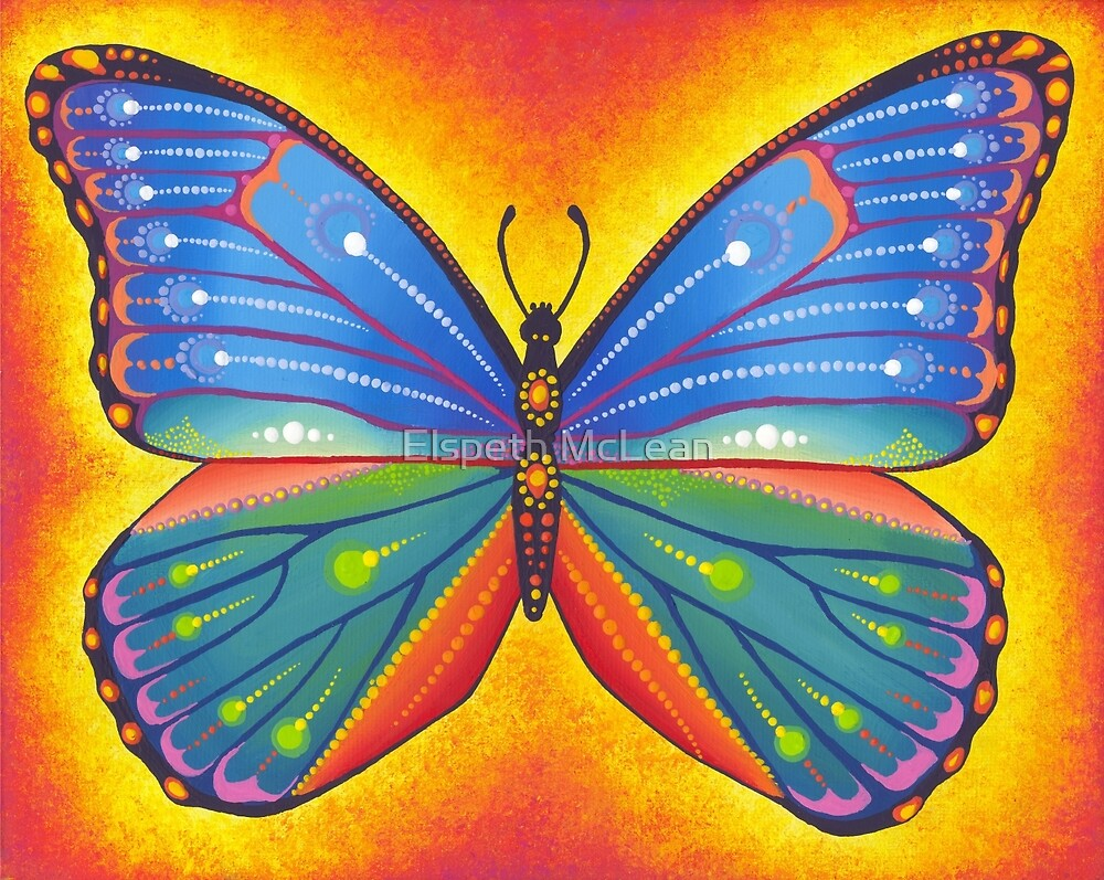 rainbow vibrant butterfly by Elspeth McLean