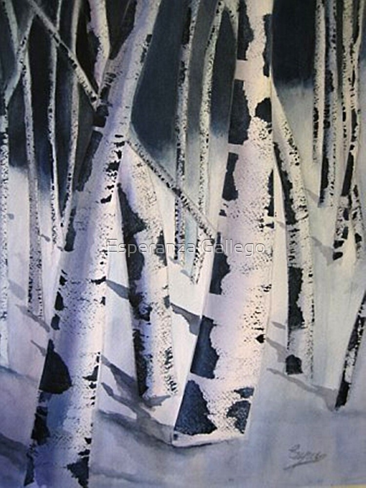 Quot Aspen Trees In Winter Watercolor Painting Quot By Esperanza