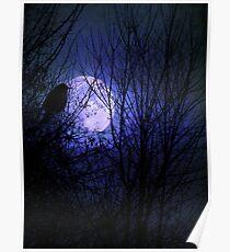 Winter's Moonglow Poster