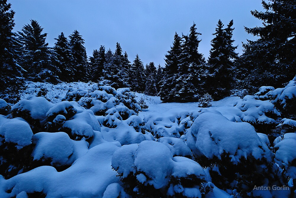 December by Anton Gorlin