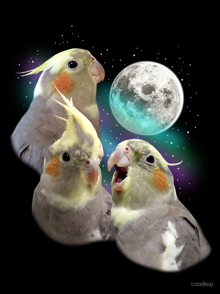 Three Tiel Moon by coodew
