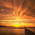 Sunset Halo by JuliaKHarwood
