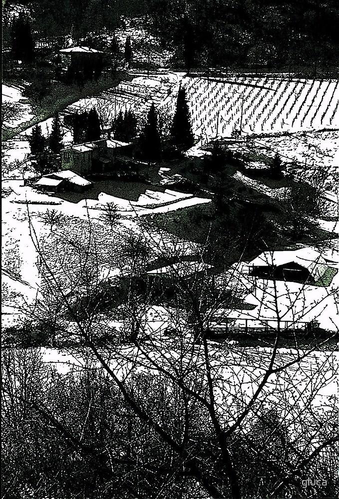 Chianti by gluca