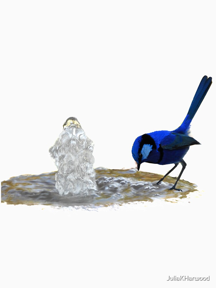 Blue wren at fountain by JuliaKHarwood