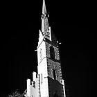 The steeple of the Marian Shrine Locherboden Tirol by Elzbieta Fazel