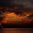 The Last Cruise by Rezoanratul