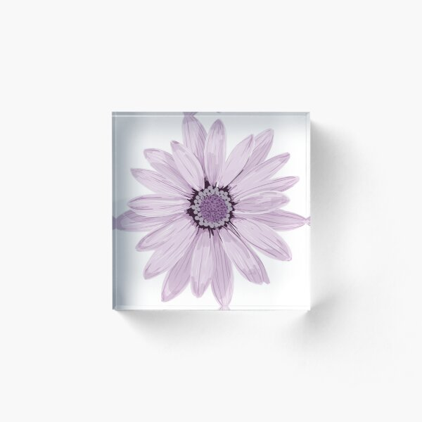Purple Daisy Acrylic Block