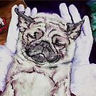 Twas the Pug before Christmas by Douglas Rickard