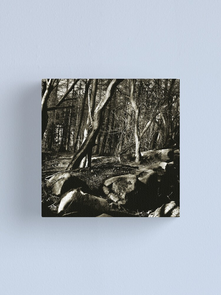Alternate view of Into the woods Canvas Print