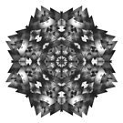 Theorem (13bw) by angelo cerantola