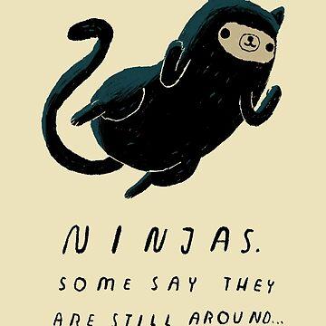 ninjas by louros