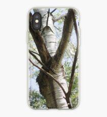 Graceful Birch iPhone Case