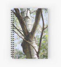 Graceful Birch Spiral Notebook