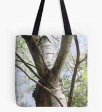 Graceful Birch Tote Bag