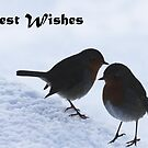 Best Wishes by SNAPPYDAVE