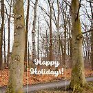 « Happy Holidays Roskilde » par Delphine Comte