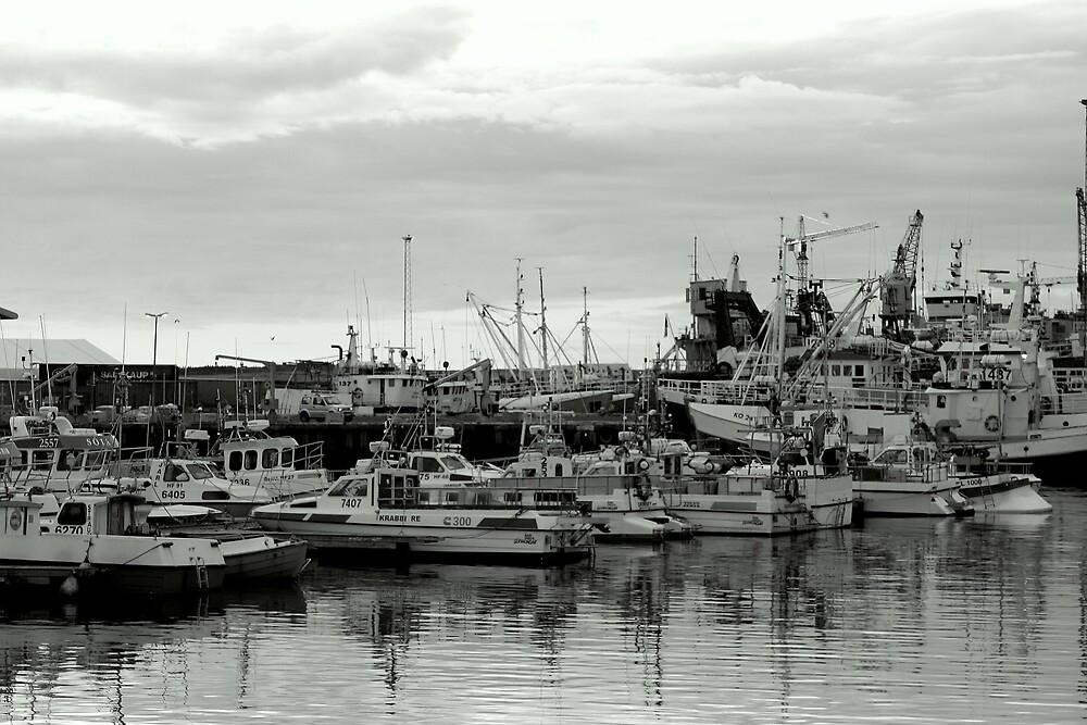 Harbor by hallimar