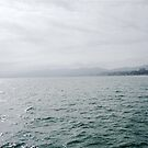 View from Santa Monica Pier by laurelstreed