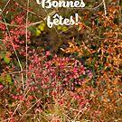 « Bonnes Fetes Skive » par Delphine Comte
