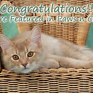 Paws n Claws Featured  Banner Challenge by sarahnewton