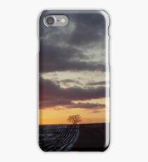 Lonely tree with brilliant sunset iPhone Case/Skin