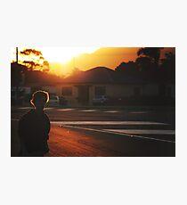 summer in suburbia Photographic Print