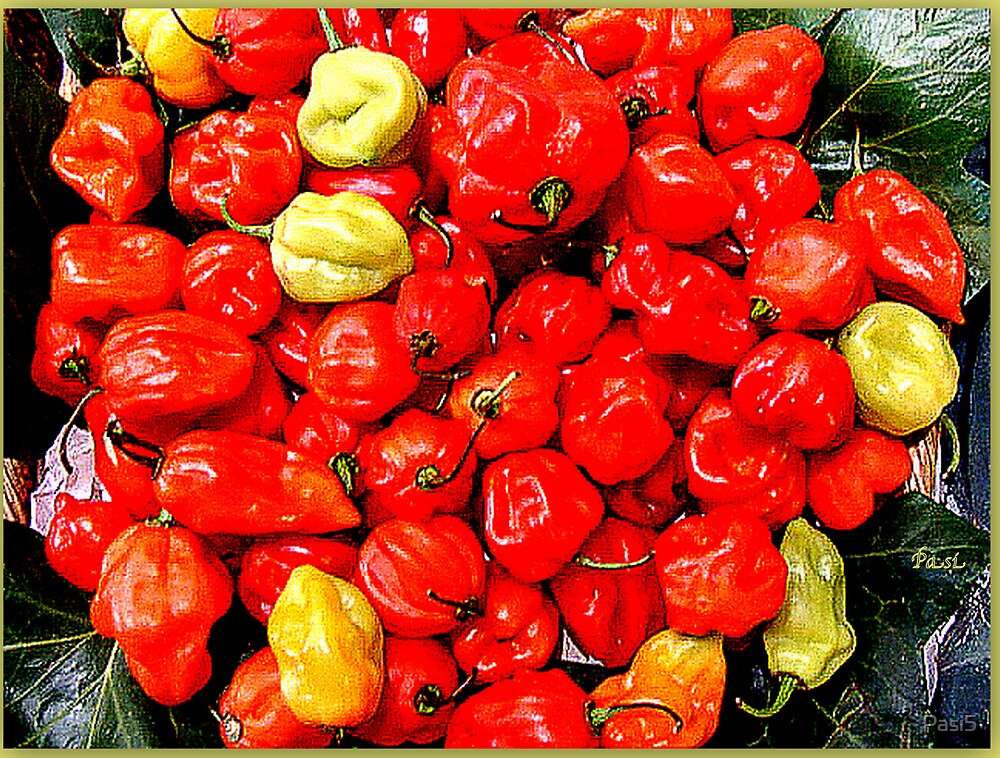Peppers by Pasi5