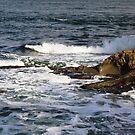 winter waves in sun by TerrillWelch