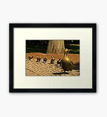 Make Way For Ducklings Framed Print