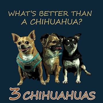 THREE CHIHUAHUA FRIENDS by rnarcio