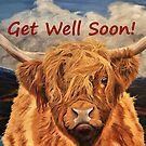 Highland Cow - Get Well Soon Card by EuniceWilkie