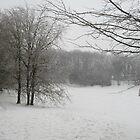 South Brent Winter von lezvee