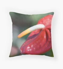 Redness Throw Pillow