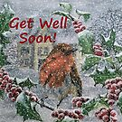 Robin in Snow - Get Well Soon Card by EuniceWilkie