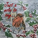 Robin in Snow - Just a Note to Say... Card by EuniceWilkie