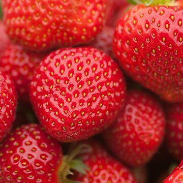 Strawberries by jon77lees
