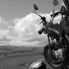 Easy Rider by Maddie