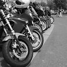 A Biker's Perspective - Moffatt by Maddie